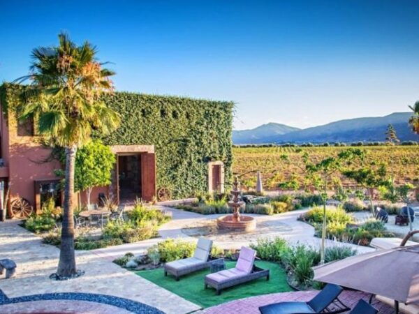 Valle de Guadalupe Boutique Hotels